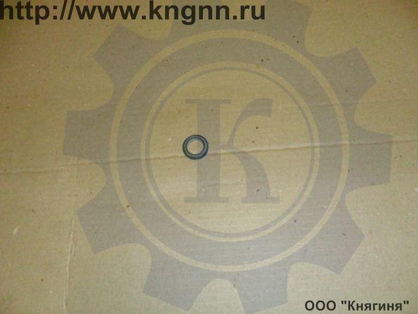 Манжета РЦС Ф25 Г-31029
