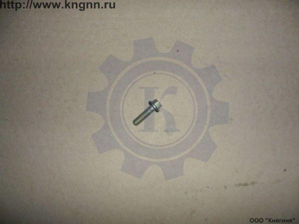 Болт М 8х30 крышки клапанов ЗМЗ-405