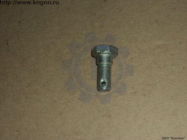 Болт М10х1х25 многоцелевой